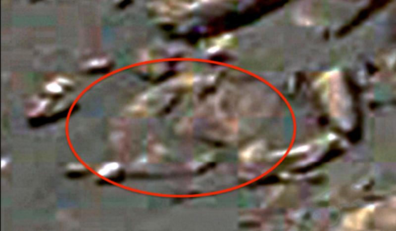 Уфологи обнаружили наМарсе живую летающую птичку
