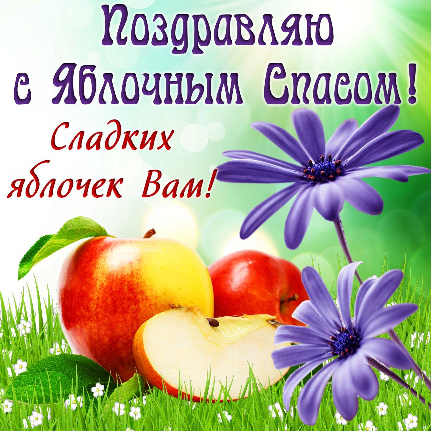 поздравительные открытки яблочный спас цивилизацию может