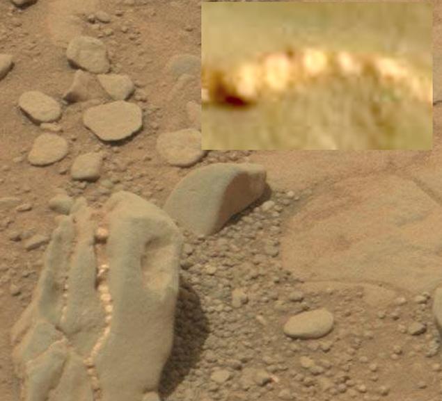 последние пару марс необычные находки фото берем лупу стесняемся