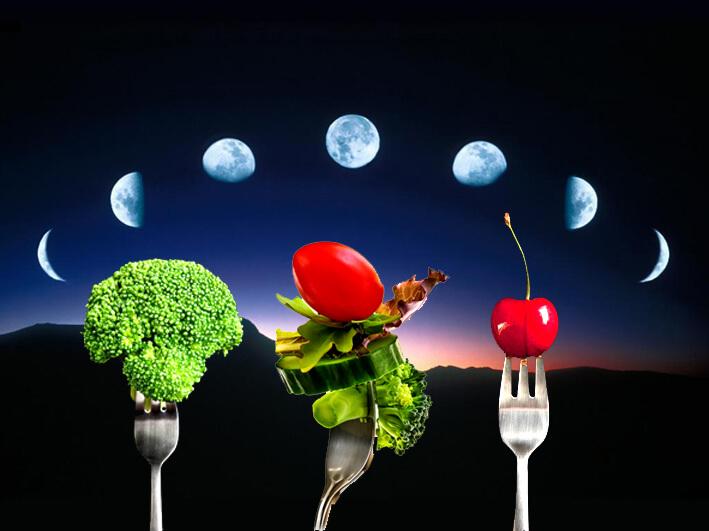 Лунный День Похудение.