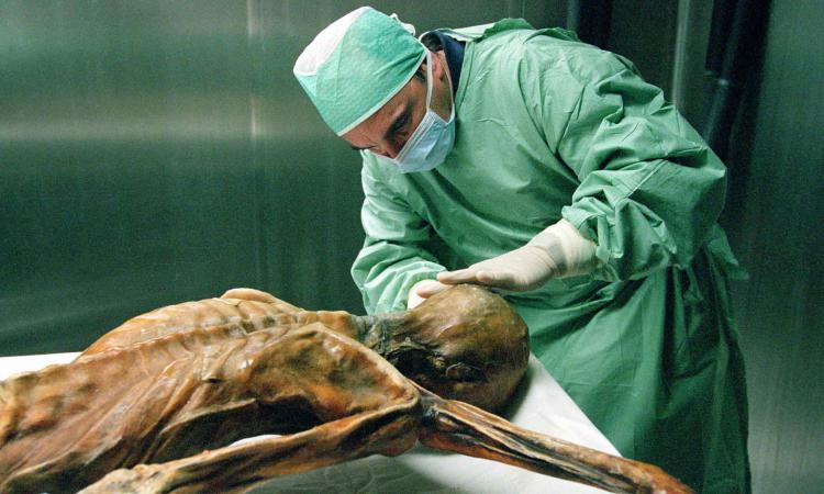 Ученые научатся к 2045г воскрешать умерших людей