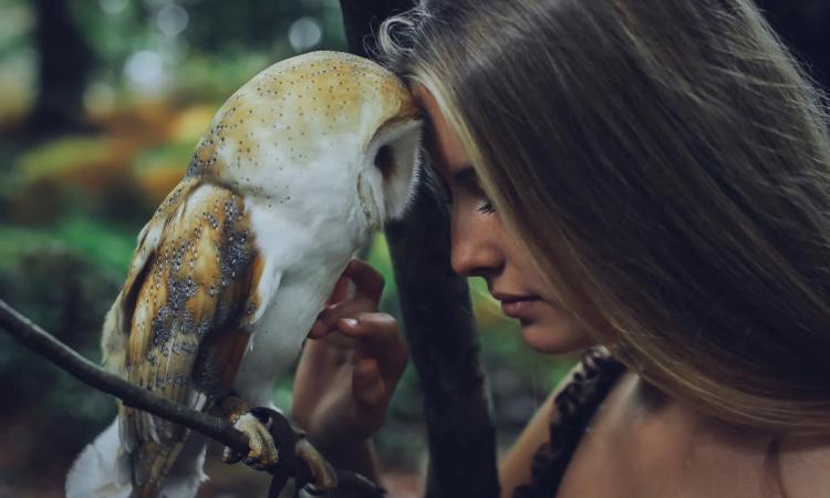Ученые жаворонки и совы различают во внешности и в заболеваниях