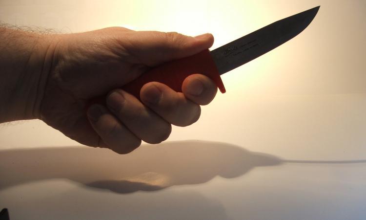 В Москве на сына актера Андриса Лиелайса напали с ножом