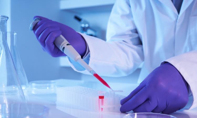Ученые нашли белки молодости в организме человека способные продлить жизнь