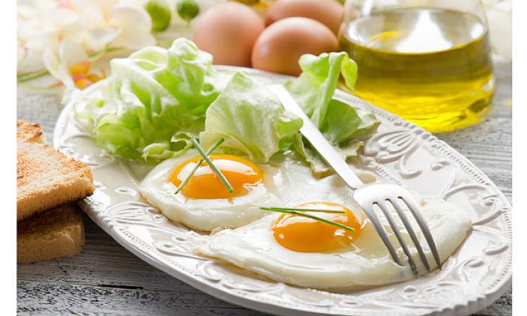 Ученые: Употребление яиц невызывает заболеваний сердца