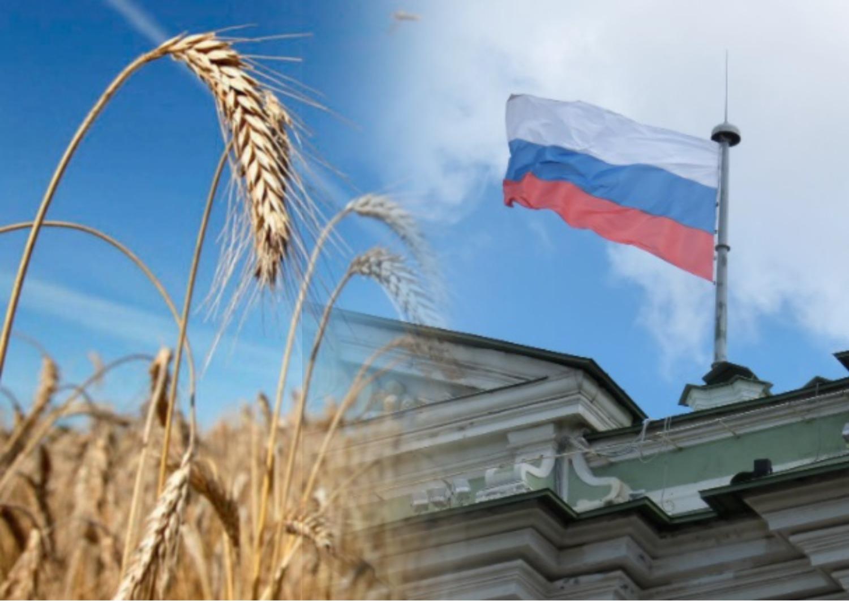 Меры России в деле экспорта пшеницы испугали мировой рынок