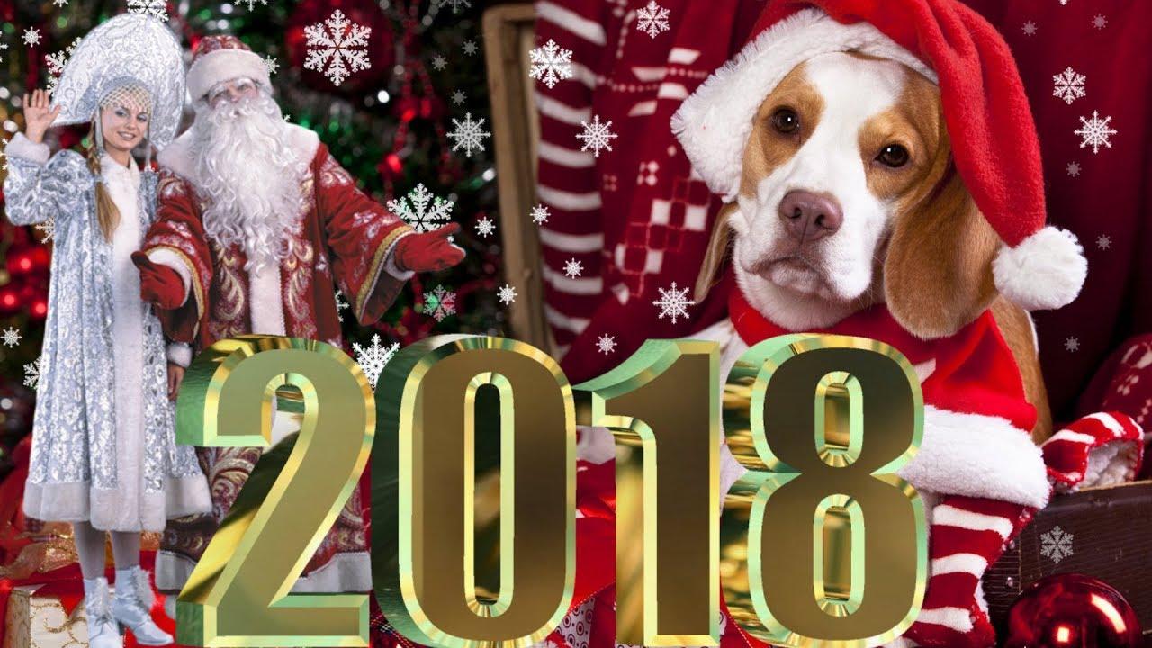 Видео открытки на 2017 год