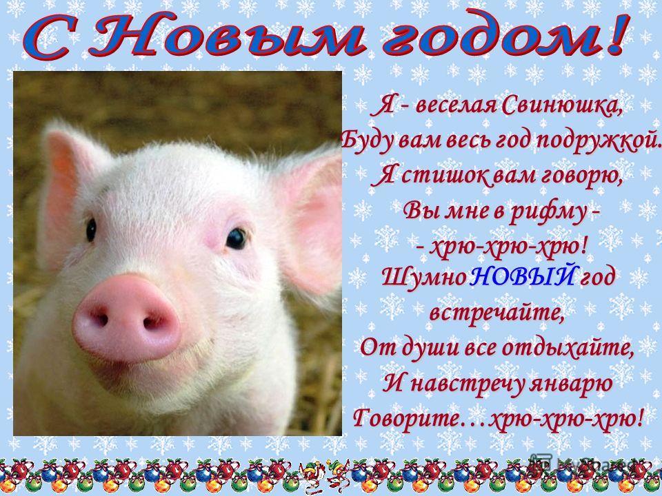 верить поздравления с днем рождения год свиньи ошибке телеконференцию