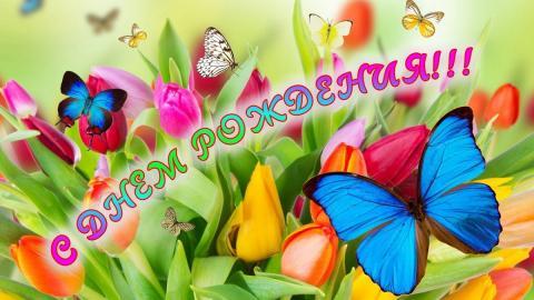 Красивые поздравления с днем рождения женщине, открытки и пожелания