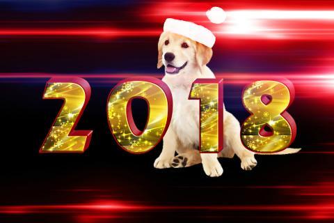 Китайский Новый год Желтой Собаки 2018
