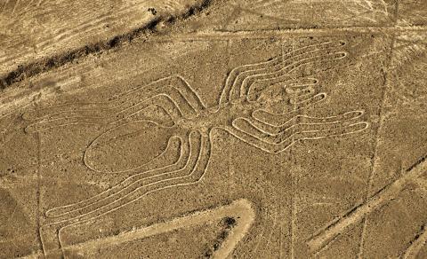 В Чили обнаружен рисунок гуманоида высотой 25 метров