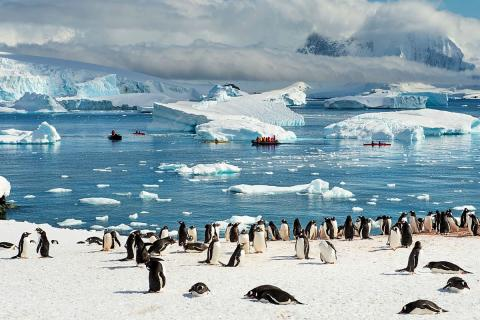 материк Антарктида фото