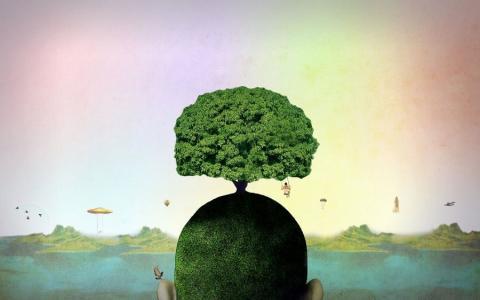 Психология несусветной глупости: 5 признаков «тяжелого» человека