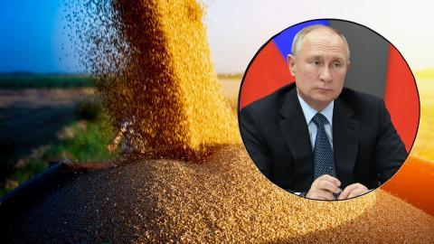 Решение Путина по экспорту пшеницы ставит вопрос российской экономике