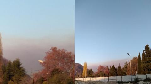 Лесные пожары на Кубани: что известно на данный момент