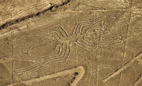 геоглифы в пустыне Наска