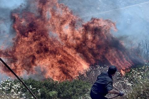 Греческие пожарные забили тревогу: огонь на острове Эвбея распространяется слишком быстро