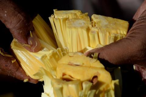 Индийский «заменитель мяса» - джекфрут, становится всё более популярным