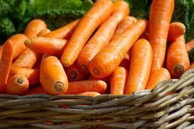 Как правильно хранить зимой морковь