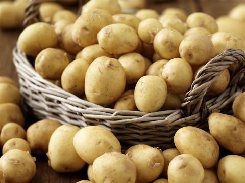 Что посадить на месте выкопанного картофеля, чтобы собрать дополнительный урожай