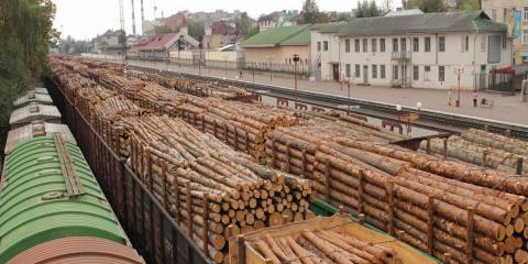 экспорт древесины картинка