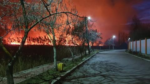 Под Одессой не могут потушить пожар на плавнях в нацпарке