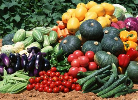 Крым овощи