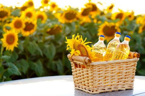 Подсолнечник и подсолнечное масло