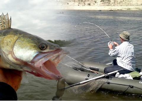 Куда поехать на рыбалку за богатым уловом: 6 лучших мест для рыбалки в регионах России
