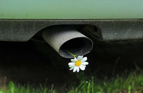 В России вводится новый опознавательный знак на автомобили