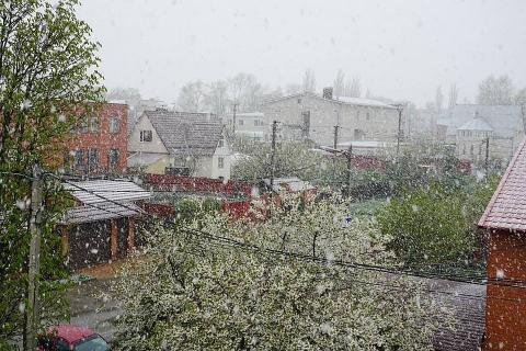 На Кубани пошел снег