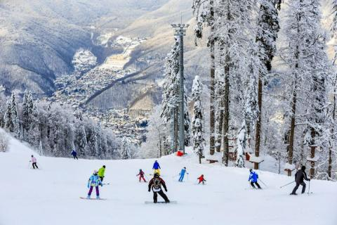 Горы, лес, лыжники
