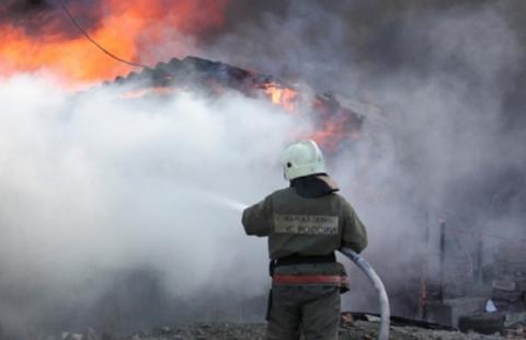 Пятеро детей сгорели в жилом доме под Новосибирском