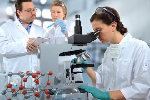 Ученые: рак можно вылечить одним лекарством