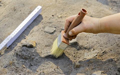 Окаменелую пулю нашли в строении 2 века до н.э. на территории древней Тавриды