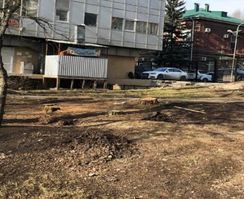 Жителей Ростова-на-Дону возмутила вырубка деревьев в парке 1 Мая