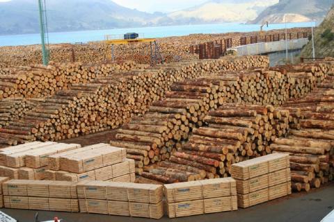 Вывоз леса в Китай