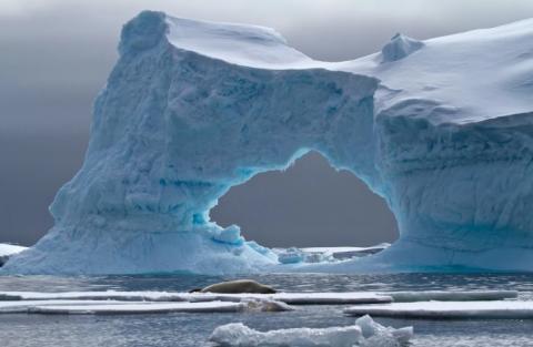 В Антарктиде обнаружено явление, грозящее масштабной катастрофой на Земле