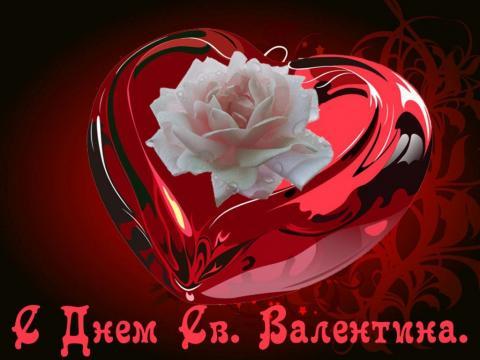 Картинки, открытки на День святого Валентина 2019: стихи, красивые поздравления с 14 февраля
