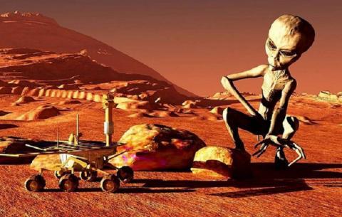 На снимках марсохода обнаружено живое существо или загадочный механизм