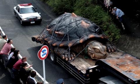 10 самых больших животных на Земле