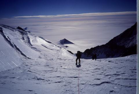 В Антарктиде сделана находка, которой свыше 4 млн лет: ученые сообщили о машине времени