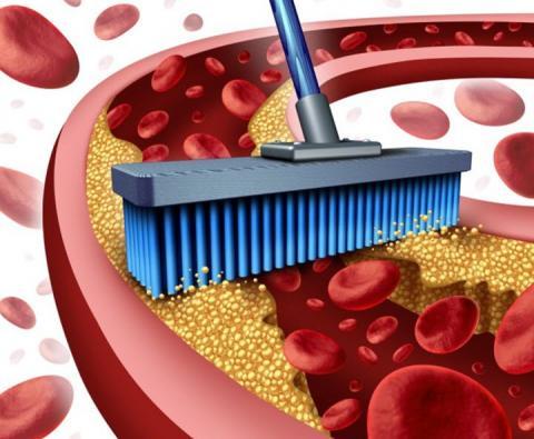 Ученые назвали лучший продукт для очищения артерий