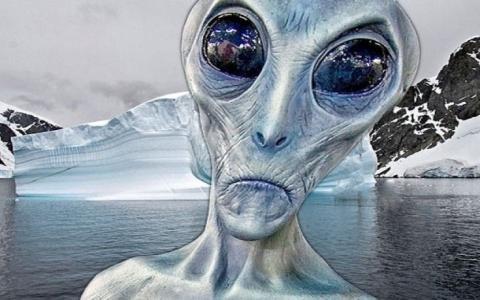 Страшнее инопланетян: в Антарктиде обнаружено жуткое существо, ученые в растерянности