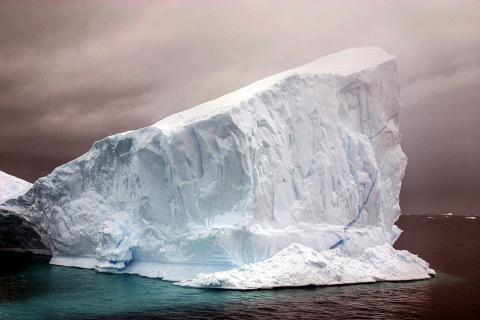 В недрах Антарктиды существует тайная жизнь – ученые