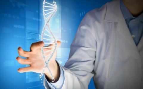 Человеческих генов намного больше, чем считалось ранее - новое открытие удивило ученых