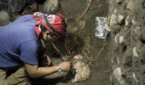 Самый древний скелет человека возрастом 27 тысяч лет нашли в Японии