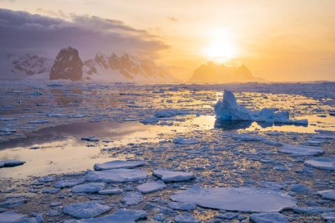 Неожиданное покрытие на поверхности Антарктиды обнаружили ученые