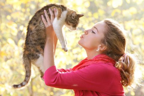 ПМС у женщин провоцируют кошки — ученые