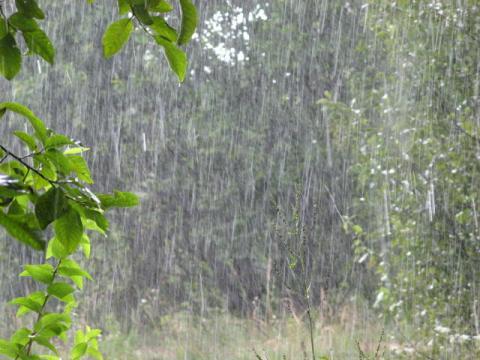 Погода на Ставрополье в начале недели
